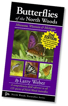 Butterflies of the North Woods