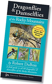 Dragonflies & Damselflies of the Rocky Mountains