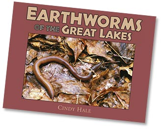Earthworms of the Great Lakes
