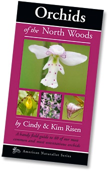 Orchids of the North Woods